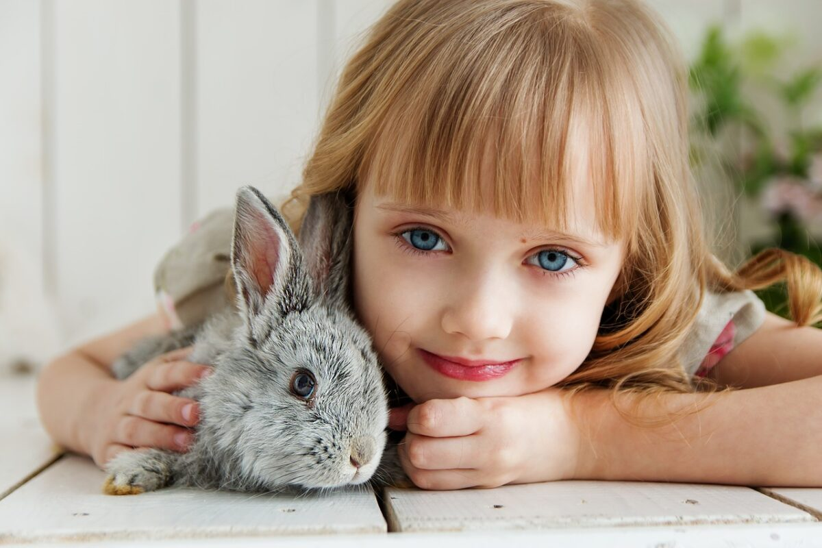 rabbit-3660673_1280-1200x800.jpg