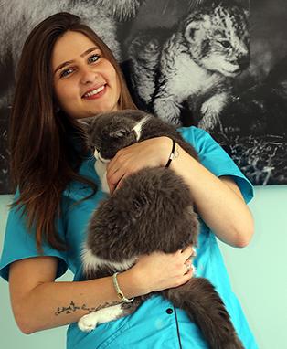 Veterinaire-paris-16-eme-ASV-Joanna